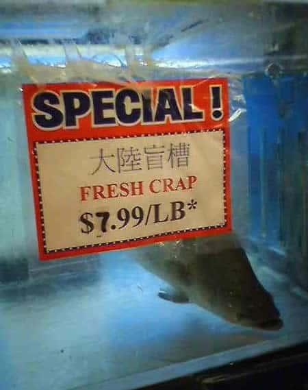 bad chinese translation 2